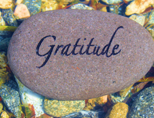 3 Proven Tips On Being Grateful To Change Your Life